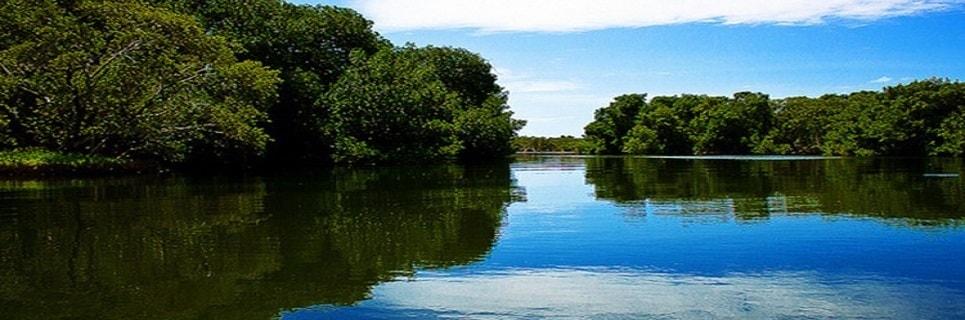 El Hierro Parco naturale La Restinga